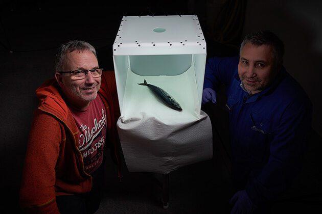 Forskerne Geir Sogn-Grundvåg og Stein Harris Olsen har utviklet fotoboksen, som kan gi fiskekjøpere verdifull informasjon.