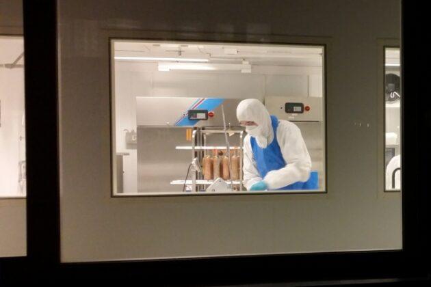 Spekepølseproduksjon i gang i Patogen prosesshall. Pølsene inneholder den farlige E.coli-bakterien, og forskerne skal undersøke hva som må til å bli kvitt den.